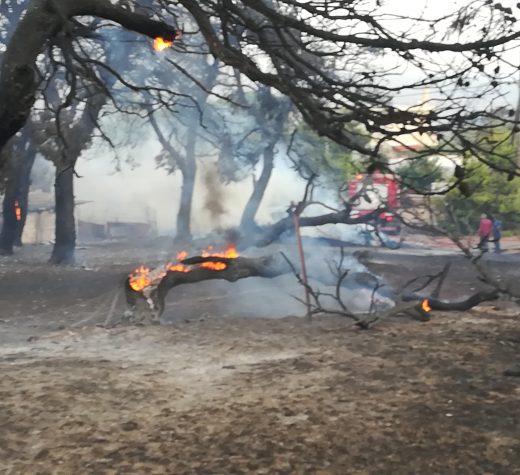 Στη διάθεση της Δημοτικής Αρχής και του ΣΠΑΠ τίθεται η ΣΥΜΠΟΛΙΤΕΙΑ για την αντιμετώπιση της δύσκολης κατάστασης με τη φωτιά στην Πεντέλη