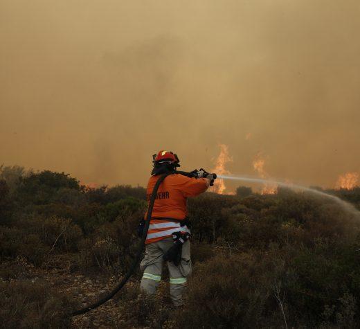 Πυροσβέστης επιχειρεί για την κατάσβεση της πυρκαγιάς στο Νέο Βουτζά Αττικής, Δευτέρα 23 Ιουλίου 2018. Στο σημείο επιχειρούν 50 πυροσβέστες, 20 οχήματα, ένα ελικόπτερο και τρία αεροσκάφη. ΑΠΕ ΜΠΕ/ΑΠΕ ΜΠΕ/ΑΛΕΞΑΝΔΡΟΣ ΒΛΑΧΟΣ