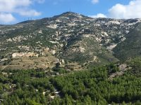 Μέρος των δασικών ζητημάτων στην περιοχή της Πεντέλης ήδη επιλύθηκε. Δήμητρα Κεχαγιά: Προς οριστική επίλυση βαίνουν τα προβλήματα της περιοχής