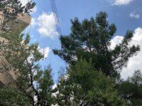 Η υπογειοποίηση του δικτύου ηλεκτροδότησης είναι η μόνη ασφαλής και οριστική λύση για την απρόσκοπτη λειτουργία του στο Δήμο Πεντέλης