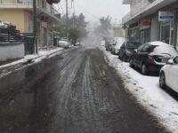 Με τη σκληρή προσπάθεια των εργαζομένων του Δήμου Πεντέλης επανέρχεται σε πλήρη λειτουργία η πόλη. Αποκαθίστανται οι ζημιές στην ηλεκτροδότηση από τον ΔΕΔΔΗΕ. Το 90% των δρόμων της πόλης είναι ανοικτοί από νωρίς το απόγευμα σήμερα, σε λιγότερο από 20 ώρες από το πέρας της σφοδρής χιονόπτωσης