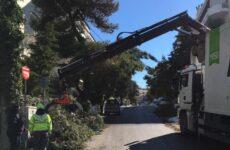 Μέσα σε μια εβδομάδα, απομακρύνθηκαν από τους δρόμους της πόλης 30.000 κυβικά κομμένα κλαδιά και δέντρα που αντιστοιχούν σε όγκο ενός εξαμήνου. Επανέρχεται σε κανονικούς ρυθμούς η πόλη
