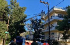 Ανοικτοί όλοι οι δρόμοι της πόλης. Αποκαθίστανται οι ζημιές στην ηλεκτροδότηση και με την αρωγή οχημάτων του Δήμου Πεντέλης προς τον ΔΕΔΔΗΕ Από αύριο ξεκινά η προσπάθεια για τη συλλογή των κομμένων δέντρων από τους δρόμους της πόλης